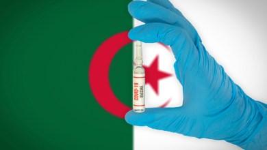كورونا الجزائر