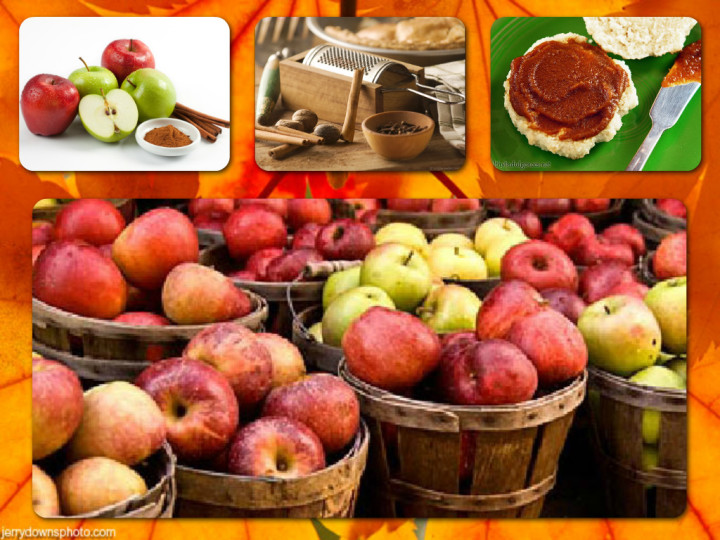 Apple Butter Collage