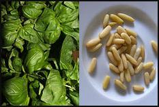 Basil & Pine Nuts