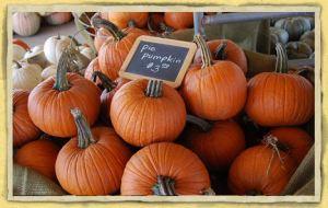 ~~pumpkins