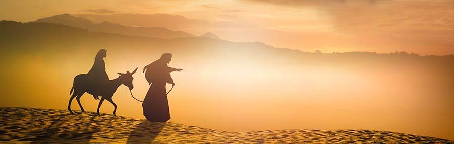 Jesus - The Begotten Son of God