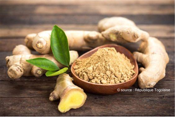 *République Togolaise* : Une usine de transformation du gingembre et de poivre, bientôt dans les Plateaux