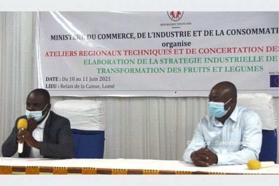 *Savoir News* : Pour l'élaboration de la stratégie industrielle de transformation des fruits et légumes : Des acteurs en atelier technique et de concertation à Lomé