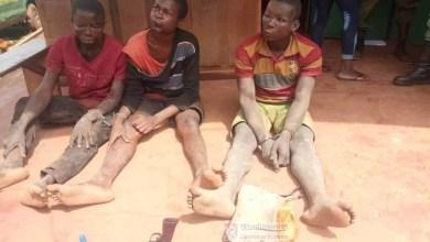 Photo of Cameroun – Sécurité: La collaboration FMO et populations rassure à l'Est