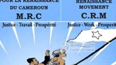 Photo of Cameroun: Dans l'Extrême-Nord, 1.768 responsables et militants démissionnaires du MRC veulent rejoindre le RDPC