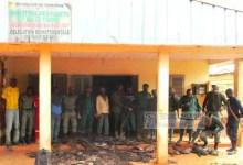 Photo de Cameroun – Braconnage : 118 pointes d'ivoires saisies à Ambam