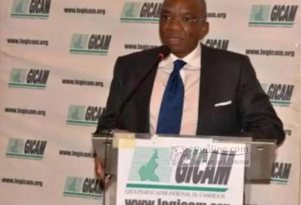 Celestin Tawamba du Gicam discours