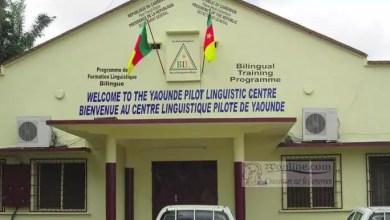 Photo of Cameroun: Du sang neuf au Centre linguistique pilote de Yaoundé