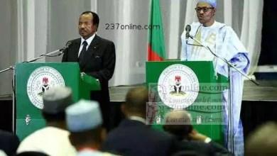 Photo de Le Cameroun et le Nigeria se concertent pour lutter contre le terrorisme et la piraterie maritime