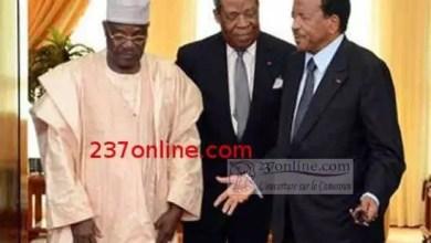 Photo of Le Président Paul Biya doit séparer les lutteurs: Cavaye Yeguie Djbril Vs Niat Njifenji