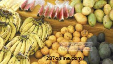 Photo of Cameroun: Les fruits plus chers à Ebolowa
