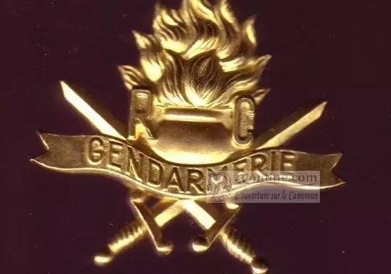 Insigne de la gendarmerie