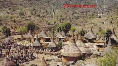 Photo de Cameroun – Mayo-Tsanaga : 7 villageois tués et 246 maisons incendiées à Tourou