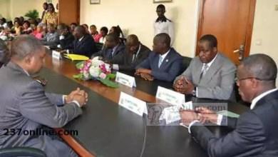 Photo of Cameroun – Ventes aux enchères: Source d'illégalités pour les agents du Minfof