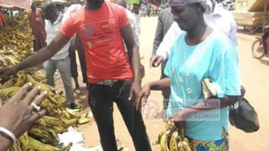 Photo de Cameroun: la relance des activités économiques annoncée à Nkongsamba