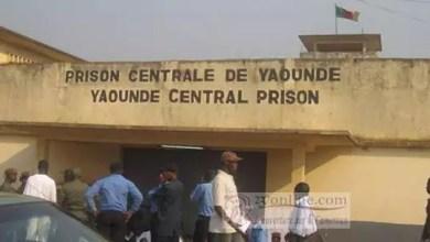Photo of Opération Épervier: pourquoi le fils de Nganou Djoumessi est poursuivi?