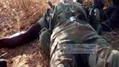 Photo de Cameroun: Un militaire camerounais tué dans une incursion de Boko Haram