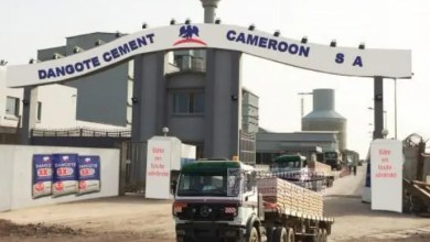 Photo de Ciment : les ventes de Dangote Cameroon chutent de 10 % au 1er trimestre 2019
