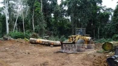 Photo of Le Cameroun bradé pendant que Beti, Bamileké et anglophone Bagarre