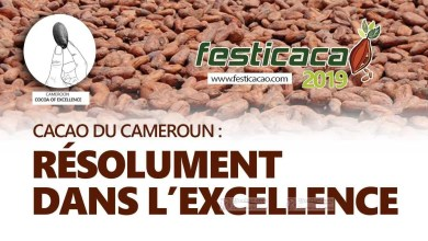 Photo of CICC, une interprofession à la recherche d'un marché d'excellence  pour un cacao d'excellence