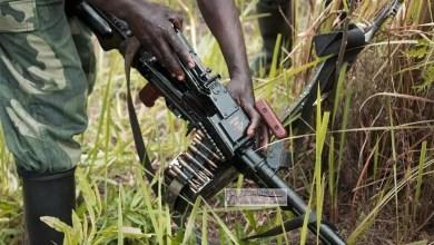 Photo of Urgent: Le vaccin anti ambazoniens et complices est là. Prenez une dose pour sauver le Kamerun !