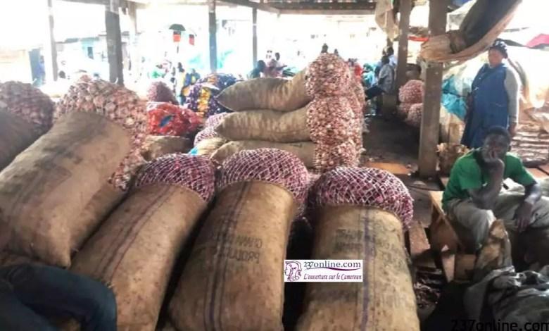 Des sacs d'oignon