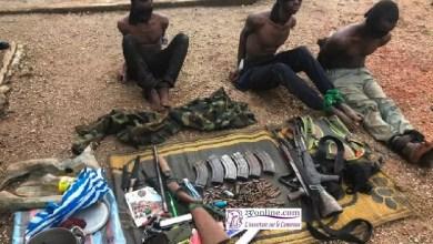 Photo of Cameroun: Démantèlement d'un gang de coupeurs de route et libération de 03 otages à l'Est
