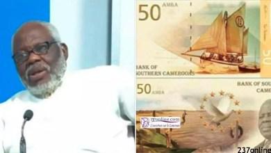 Photo of Crise anglophone: AYAH Paul ABINE accusé d'être un Chef de guerre ambazonien