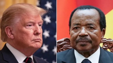 Photo of Déstabilisation du Cameroun: Comprendre la méthode Donald Trump