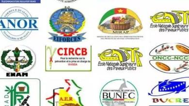 Photo of Cameroun: Voici les salaires des Dg, des Dga et des Pca