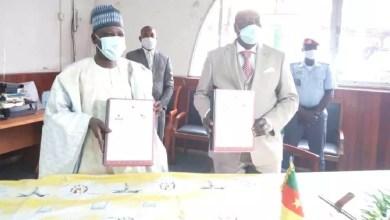 Photo of Cameroun : Le MINJEC et la CAMPOST main dans la main pour soutenir la jeunesse
