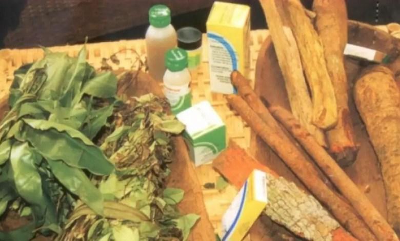 medecine traditionnelle au Cameroun