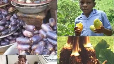 Photo of Un Ivoirien ou un Camerounais qui dort sans manger, est un cancre fini