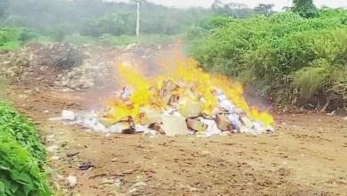 medicament de contrebande brulée