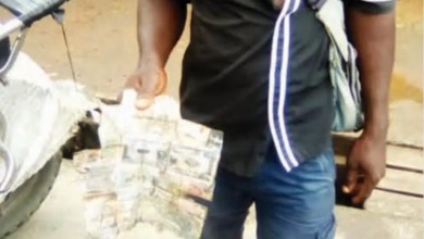 Photo de Cameroon: Collecting Mutilated Bank Notes For Trade