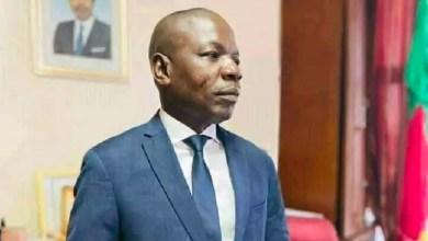 Photo de Cameroun – Affaire Pierre AMOUGOU BELINGA : Pardonnons aussi au Zomloa