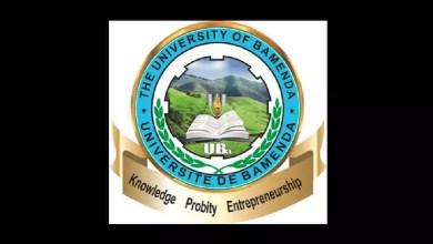 Université de Bamenda LOGO