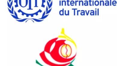 Organisation Internationale du Travail et MINPMEESA