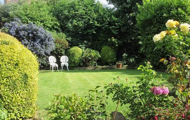 Jak utrzymać estetykę przydomowego ogrodu?