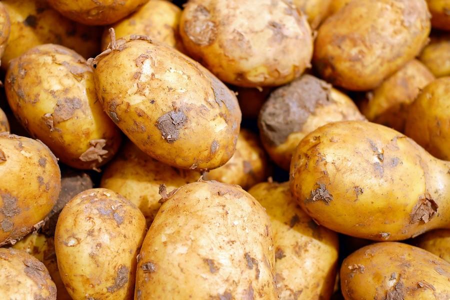 Obieraczki do ziemniaków dla gastronomii