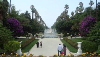 Réouverture du Jardin d'Essai à Alger: les visiteurs soumis à un protocole sanitaire