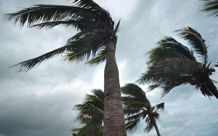 Des vents forts souffleront sur plusieurs wilayas de l'est et du sud