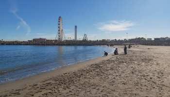 Réouverture du Jardin d'Essai et de la Promenade des Sablettes à Alger