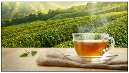 5 Reasons to Have Organic Green Tea Everyday