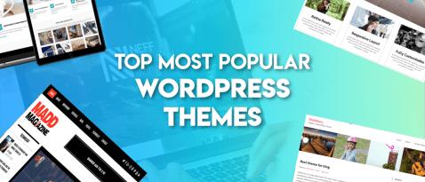 41 Most Popular & Best WordPress Themes - 24x7wpsupport