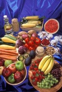 Diet is Important in Treating Diarrhoea Caused by Metformin
