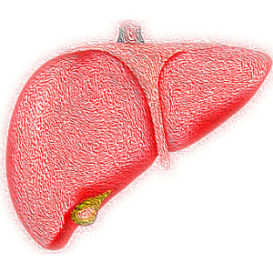 Taking Augmentin with alcohol increases chances of liver damage.