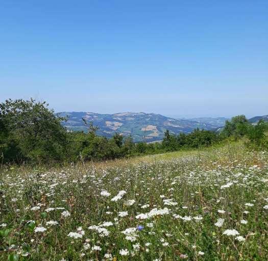 Camminare lungo la Via degli Abati, cinque Valli attraverso gli Appennini da Pavia a Pontremoli