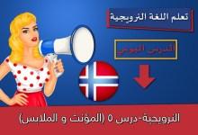 النرويجية-درس 5 (المؤنث و الملابس)