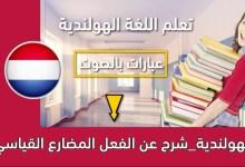 الهولندية_شرح عن الفعل المضارع القياسي